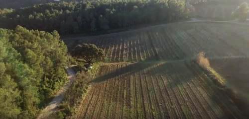 Le Domaine Puech à Saint Clément de Rivière, vu du ciel